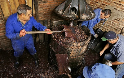 Winemakers Crushing Grapes with Traditional Tools in Spain