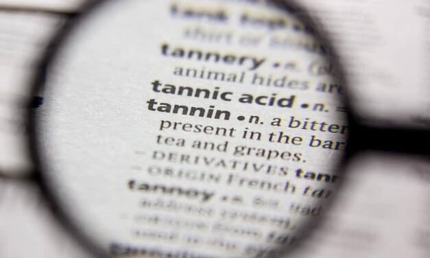 What Are Tannins and What Do They Do in Wine?