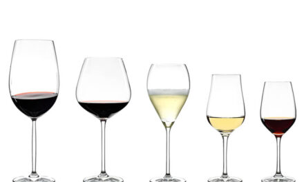 Wine Glasses Explained – The Glassware Guide