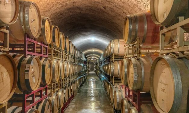 What Is Oaked Wine and How Does It Taste?