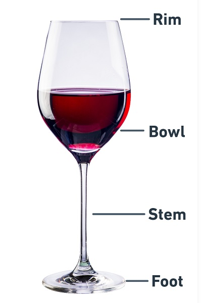 Wine Glass With Labels Explaining Its Components