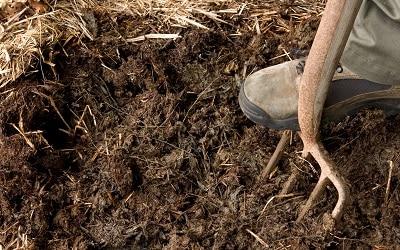 Animal Manure for Organic Fertilizing