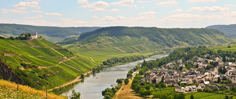 Vineyards on Slopes in the Mosel region, Germany