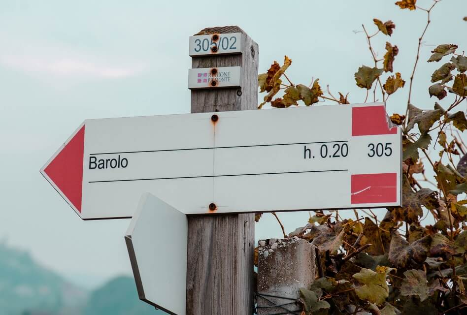 Barolo – The Best of the Best of Italian Wines