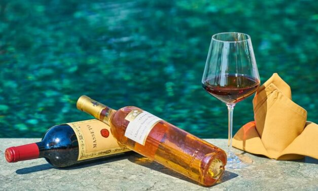 The Best Summertime Wine Tools for Your Garden Party