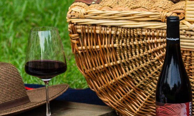 The Best Bags for Safe Wine Bottle Transport